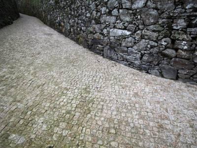 Pedrachán en Noia